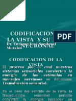 Sistema Sensorial Vision Ibdc