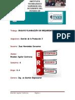 Ensayo ERP