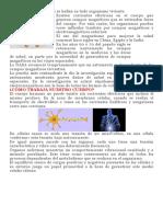 Bio Magnetismo - Jmocean Avenue