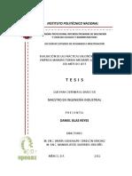1351716460278Tesis.pdf