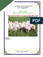 Lập Dự Án Trang Trại Lợn Siêu Nạc Bắc Kạn