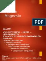 Ca - P - Mg