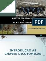 Lab-Arac Seminário - Morfologia e Chaves Dicotomicas