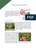 Medidas de Prevencion Del Cancer de Colon