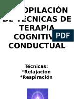 técnicas de la terapia cognitivo coductual