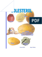 [eBook]Colesterol - Tratamiento Natural Alimenticio