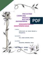 ESQUIZOFRENIA INDIFERENCIADA.docx