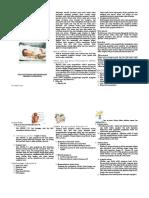 Leaflet Asfiksia