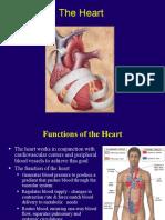 heart parmann teacher copy  1