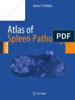 (Atlas of Anatomic Pathology) Dennis P. O'Malley (Auth.)-Atlas of Spleen Pathology-Springer-Verlag New York (2013)