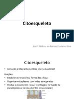 Citoesqueleto FCSES