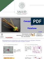 Paludismo 2015