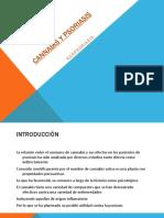Cannabis y psoriasis.pdf