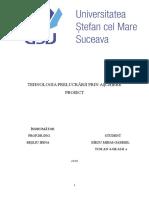Proiect Tpa an 4 Sem 2