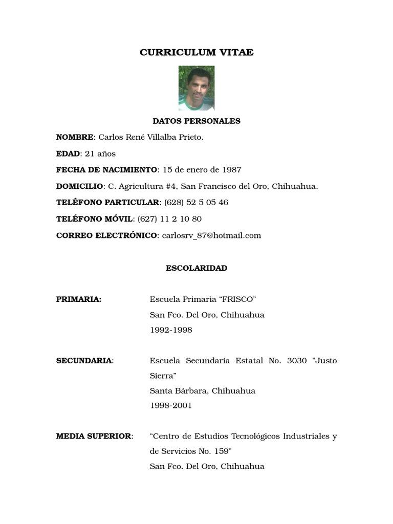 Curriculum Vitae René 1 Ejemplo