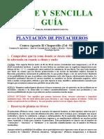 Guia Pistachos Plantacion
