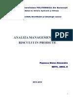Proiect Analiza Riscurilor Popescu Alexandra