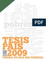 Calle Tesis Pais 2009