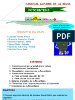 1-FOTOSINTESIS