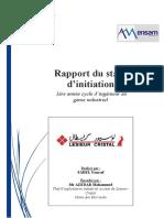 Rapport Stage d'Initiation LESIEUR