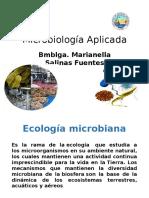 Organización de Los Microganismos en La Naturaleza