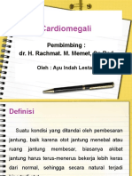 Lapkas Cardiomegaly