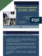 Anatomia Radiologica Normal  Maxilar Superior