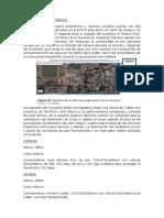 INSTALACIONES SANITARIAS-FIECS