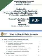 Tutela Juridica Medio Ambiente III- Diplomado en MA- UC