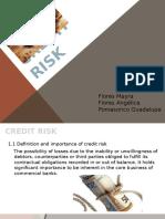 Credit Risk Final
