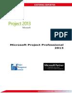 Manual Microsoft Project Professional