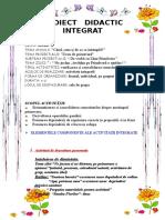 13_proiect_inspectie