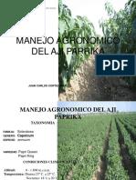 MANEJO AGRONOMICO DEL AJI PAPRIKA.pdf