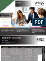 ONLINE - Ingeniería Comercial (1)
