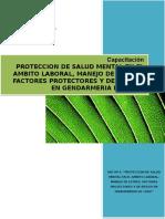 Manual Factores Protectores y Riesgo 2010 GENCHI