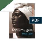 254_Dykumu_gele