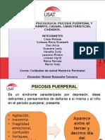 Collage de Grupo-Depresión y Psicosis Puerperal