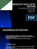 ENFERMEDAD DE PERTHES.ppt