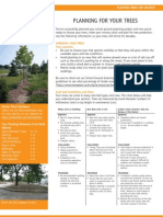 Fact Sheet 1 - Planning for Your Trees