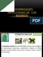 3-ENFERMEDADES INFECCIOSAS DE LOS BOVINOS.pptx