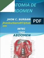 5 Anatomia de Abd