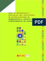 95868-Guia Cdp Organización y Control de La Transformación de Caucho