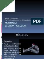 8) ANATOMIA (Sistema Muscular-cabeça e Pescoço) (1)