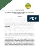 ACCIÓN URGENTE - BAGRE Y SEGOVIA ANTIOQUIA .pdf