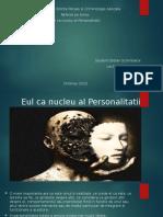 Eul CA Nucleu Al Personalitatii-1
