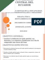 Histo Embrio Tejido Epitelial