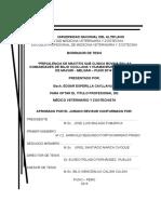 tesis mastitis sub clinica en bovinos del distrito de macari