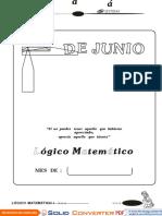 LOGICO - JUNIO.doc