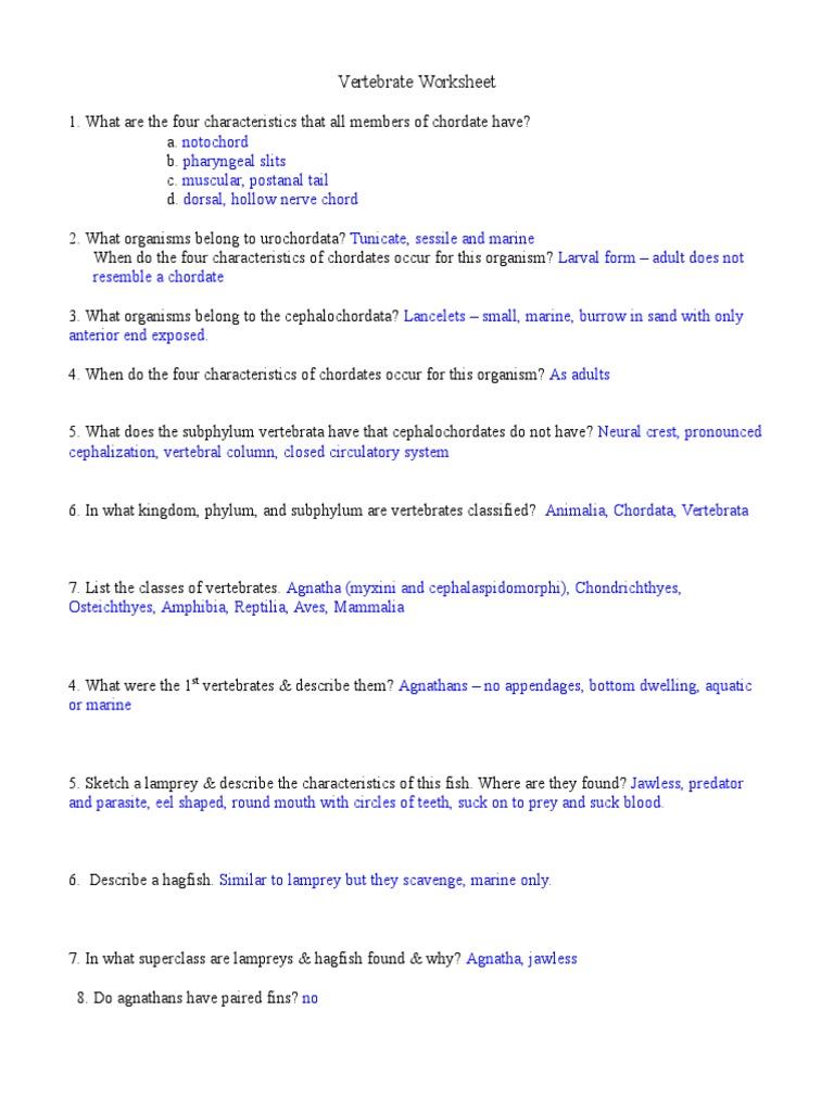 Worksheets Special Senses Worksheet chapter 8 special senses worksheet answers pixelpaperskin collection of sharebrowse