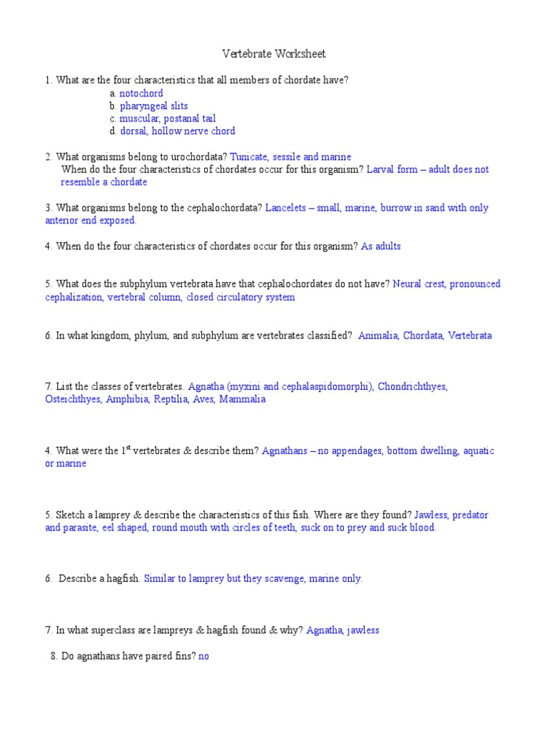 Vertebrate Worksheet Answers Reptile – Vertebrate Worksheet